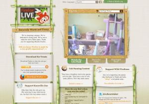 screenshot of Firefox camera site